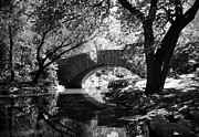 Gapstow Bridge Framed Prints - Gapstow Bridge Framed Print by Cornelis Verwaal