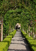 Walk Paths Prints - Garden Arbor Path Print by Carol Groenen