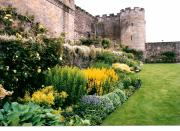 Sterling Art - Garden at Stirling Castle by Sharon Blanchard