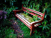Lainie Wrightson Prints - Garden Bench at The Old Rectory Print by Lainie Wrightson
