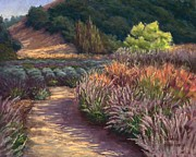 Sonoma County Originals - Garden Crescendo by Debbie Harding