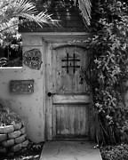 Screen Doors Photos - Garden Doorway 2 by Perry Webster