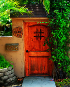 Screen Doors Photos - Garden doorway by Perry Webster