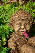 Elf Photos - Garden Elf 1 by Douglas Barnett