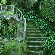 Stairway To Heaven Posters - Garden Entrance Poster by Audrey Bunn