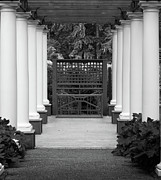 Simpsons Framed Prints - Garden Entry bw Framed Print by Kami McKeon