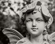 Christopher Holmes - Garden Fairy - Sepia