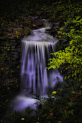 Clemson Art - Garden Falls by Lynne Jenkins