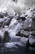 Fine Photography Art Prints - Garden Falls Print by Mike Irwin