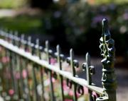 Wrought Iron Framed Prints - Garden Fence Framed Print by Rebecca Cozart