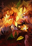 Decorative - Garden Glow by David Lane