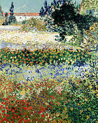 Garden Tapestries Textiles Posters - Garden in Bloom Poster by Vincent Van Gogh