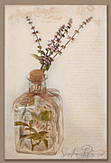 Glass Wall Prints - Garden Note  Print by Sandra Rossouw