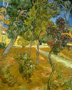 Foliage Paintings - Garden of Saint Pauls Hospital by Vincent van Gogh