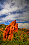 Colorado Springs Art - Garden Of The Gods 8 by Emily Stauring