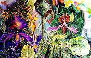 Orchids Drawings - Garden of the Mind by Mindy Newman