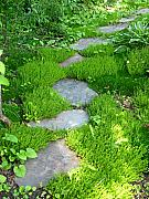 Stepping Stones Photo Prints - Garden Path Print by Idaho Scenic Images Linda Lantzy