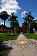 Trees And Palm Trees - Garden Path to the Ringling Mansion in Sarasota FL by Susanne Van Hulst