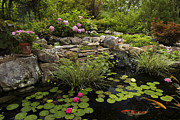 Water Garden Metal Prints - Garden Pond - D001133 Metal Print by Daniel Dempster
