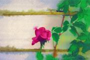 Digital Paint Posters - Garden Rose Poster by Holly Ethan