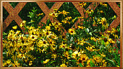 Natures Flower Garden Mixed Media Posters - Garden Sunshine Poster by Debra     Vatalaro