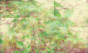 Dan Turner - Garden Wall
