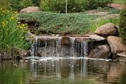 Kate Farrant - Garden Waterfall