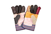 Enterprise Metal Prints - Gardening gloves Metal Print by Tom Gowanlock