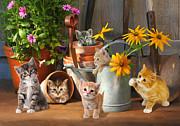Gardening Kittens Print by Bob Nolin