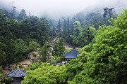 Japanese Landscape Framed Prints - Gardens at a Mountain Shinto Temple Framed Print by Jeremy Woodhouse