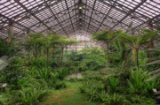 Chicago Prints - Garfield Park Conservatory Main Pond Print by Steve Gadomski