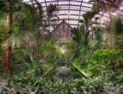 Garfield Prints - Garfield Park Conservatory Reflecting Pool Print by Steve Gadomski