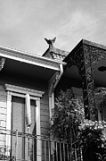 New Orleans Prints - Gargoyle Statue above French Quarter Balcony New Orleans Black and White Print by Shawn OBrien