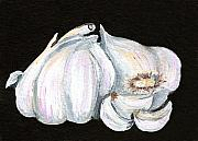 Fragrant Painting Framed Prints - Garlic 1 Framed Print by Elaine Hodges