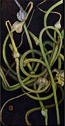 Garden Pyrography Originals - Garlic Heads by Cynthia Adams