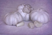 Cuisine Originals - Garlic in Purple by Sophie Vigneault