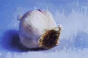 Garlic Digital Art - Garlic by Ron Jones