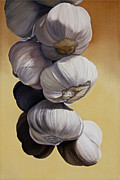 Photorealism Posters - Garlic Still Life Poster by Matthew Bates