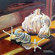 Garlic Originals - Garlic by Tim Johnson