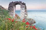 Bulgaria Posters - Gate in the Poppies Poster by Evgeni Dinev