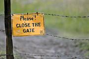 Gate Keeper Print by Juls Adams