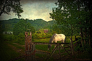 Country Scene Digital Art Prints - Gate to the Past Print by Lianne Schneider