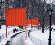 Central Park Photos - Gates by Angela Wright