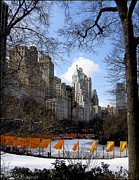 Installation Art Prints - Gates Installation in Central Park New York Print by RC Candolin-Gelber
