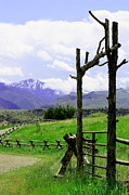 Split Rail Fence Framed Prints - Gateway Framed Print by Glenda Brunette