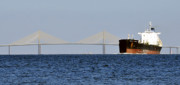 Sunshine Skyway Bridge Prints - Gateway to Tampa Bay Print by David Lee Thompson