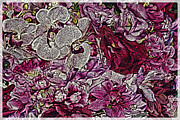 Blossoming Originals - Gathering Blooms by Eileen Mandell
