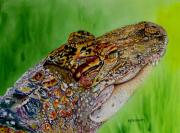 Alligator Paintings - Gator Ali by Maria Barry