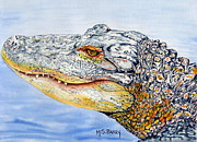 Gator Metal Prints - gator Alice Metal Print by Maria Barry