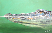 Florida Gators  Paintings - Gator by Shannon Wiley